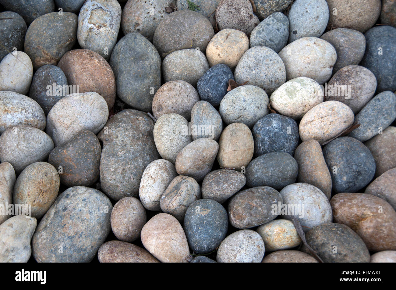 River rocks like these can be used for landscaping in dry climate; they also make a nice border between a sidewalk and city street. Stock Photo