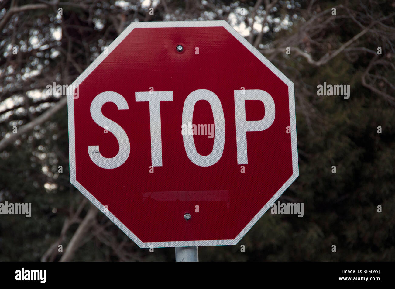 A stop sign on the road clearly indicates when a driver must stop their vehicle, usually at an intersection. - Stock Image