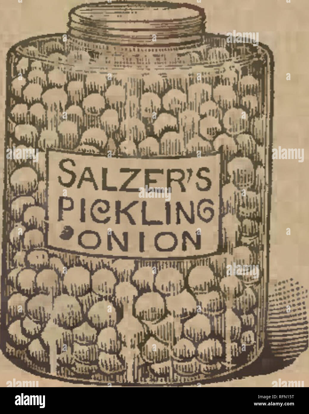 . Spring 1897. Nursery stock Wisconsin Catalogs; Fruit Catalogs; Flowers Seeds Catalogs; Vegetables Seeds Catalogs; Cereal grasses Seeds Catalogs; Grasses Seeds Catalogs. Pkg:., lOc.; 02.. PRICE OF THE GREAT GIANT SILVER KINO ONION, HIGHEST GRADB* 20c.; ^ lb., 60c.; lb., S1.90; 2 lbs., «3.60; 4 lbs., »6.75. postpaid. P^,f??f:^f^^L*l*;M*' P*^8^*' ! • 5i lb., 46c.; lb., »1.»0; 3 lbs., «3.30: 4 lbs.; $6.30. LOW PRICED SILVER KING ONION SEED: Pkg., ec: oz., 16c.: ^p^ ou. K lb., 35c.; lb., S1.25. postpaid. •» , New Queen. The earliest, finest of all white Onions. A perfect queen in the fi'^ld; of d - Stock Image
