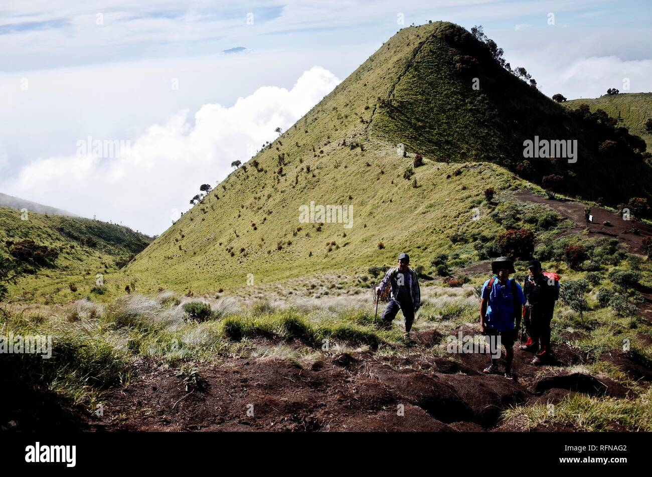 Double Summit Mount Merapi and Mount Merbabu experience - Stock Image