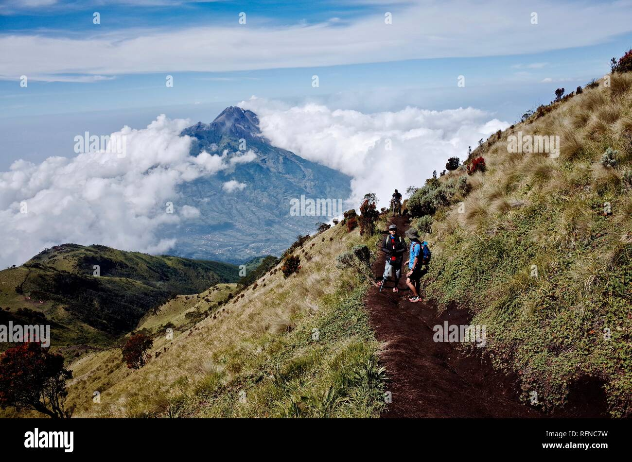Double Summit Mount Merapi and Mount Merbabu experience Stock Photo
