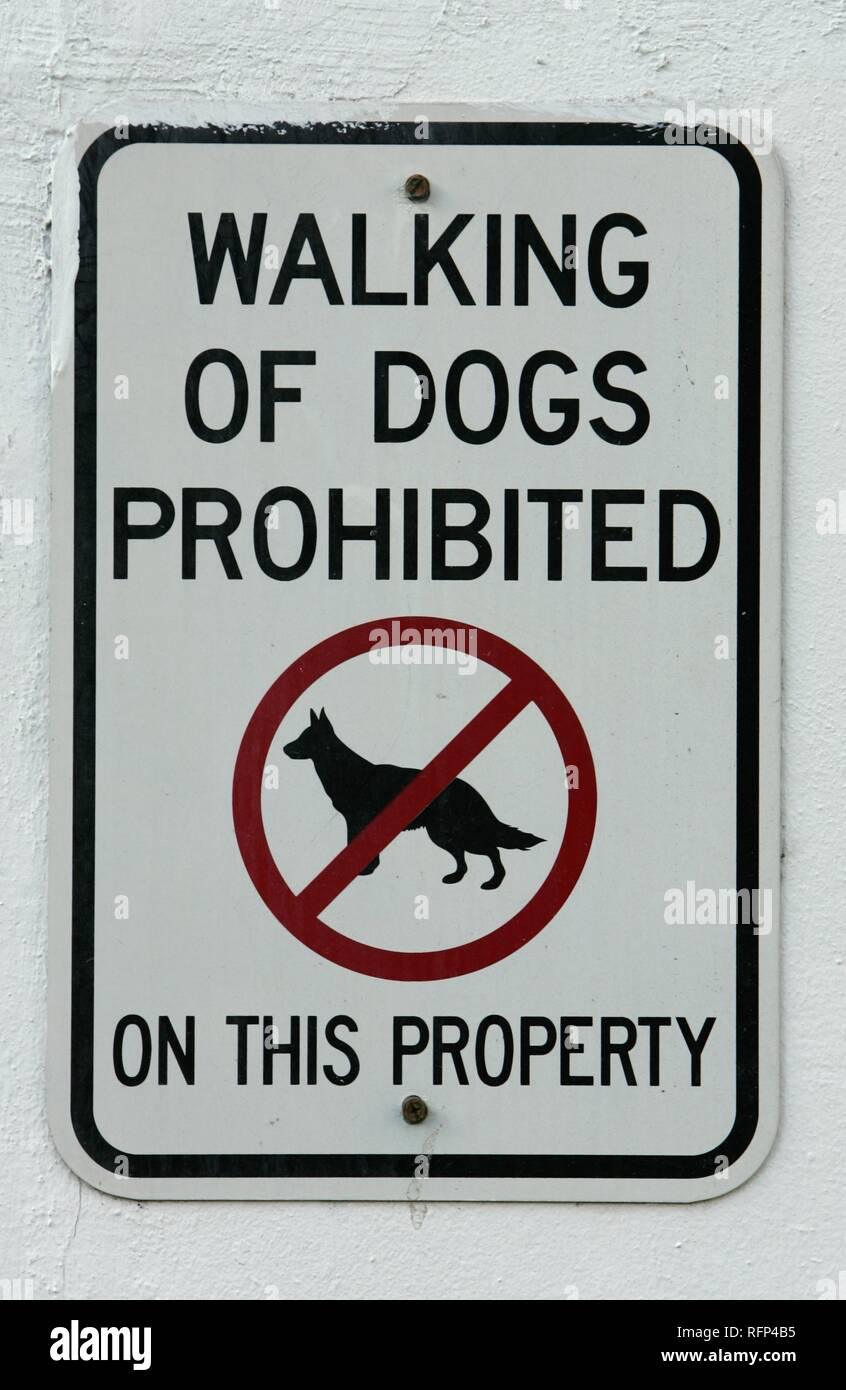 Sign prohibits dog walking, Miami Beach, Florida, USA - Stock Image