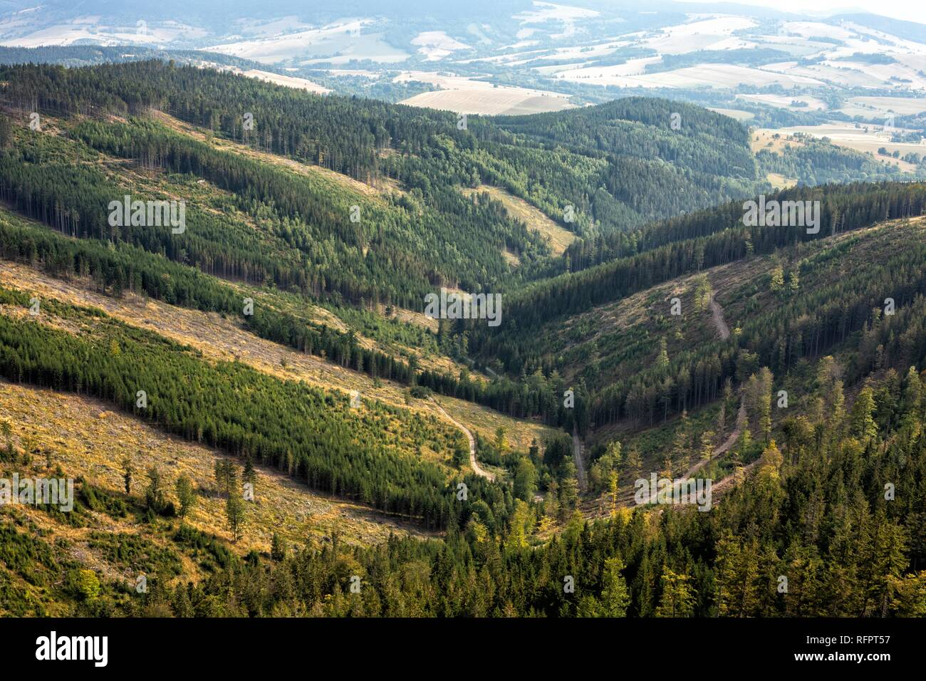 Mountain landscape on a summer day. Summer in the mountains. Beautiful panorama for a postcard or calendar. View of the green slopes and hills. Journe - Stock Image