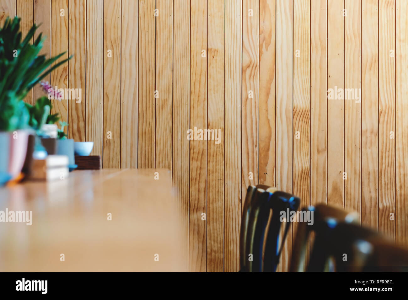 Wooden Wall in Restaurant and Cafe, Contemporary Interior Design. Natural Daylight - Stock Image
