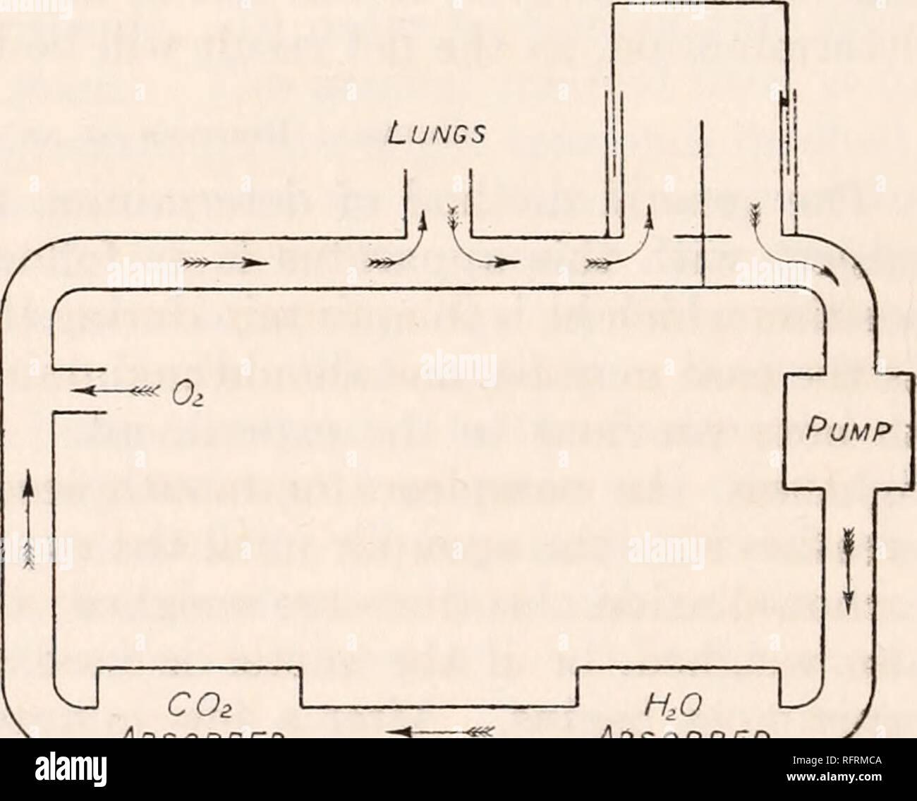 Carbon Dioxide Cylinder Stock Photos & Carbon Dioxide Cylinder Stock