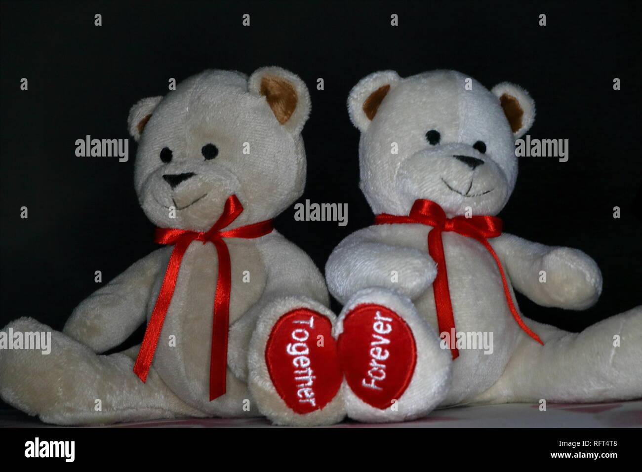 a pair of small soft toy bears with a visible word on their touching paws - Stock Image