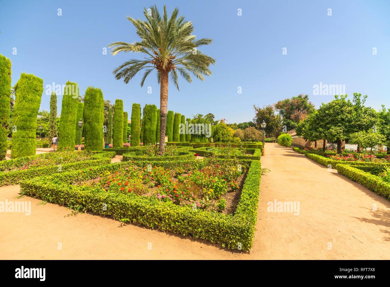 Palm trees and hedges, Jardines del Alcazar, ornamental gardens of Alcazar de los Reyes Cristianos, Cordoba, UNESCO, Andalusia, Spain - Stock Image