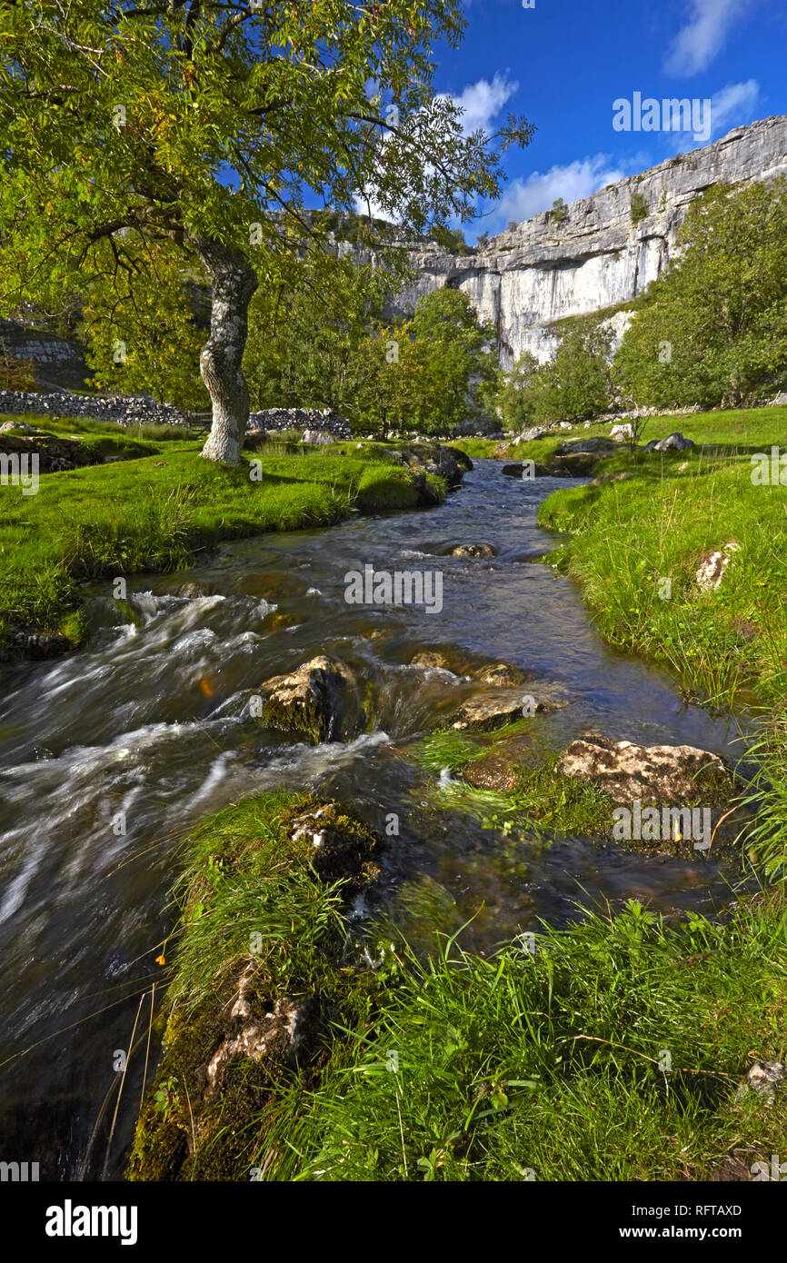 A view of Malham Cove in Malhamdale, Yorkshire Dales National Park, North Yorkshire, England, United Kingdom, Europe - Stock Image