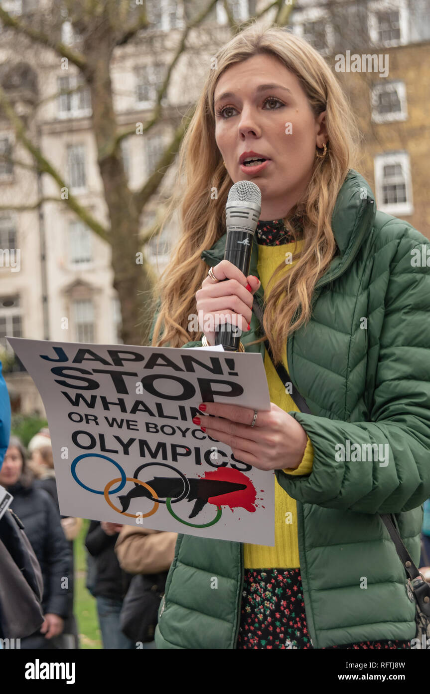 London Uk 26th January 2019 Carrie Symonds Conservationist And