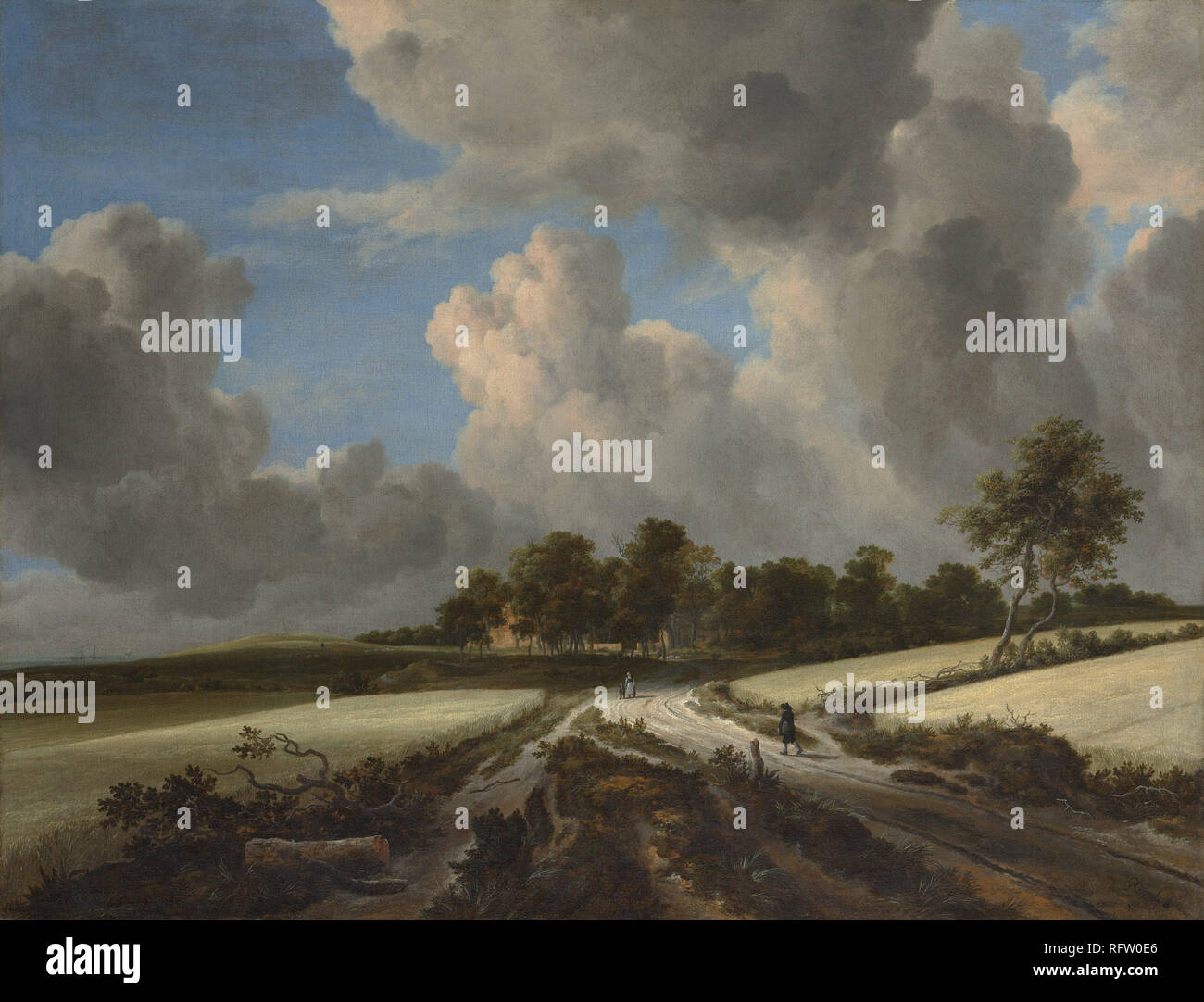 Working Title/Artist: Jacob van Ruisdael, Wheat Fields  Department: European Paintings Culture/Period/Location:  HB/TOA Date Code:  Working Date:  photography by mma, DP145911  touched by film and media (jnc) 9_30_08 - Stock Image
