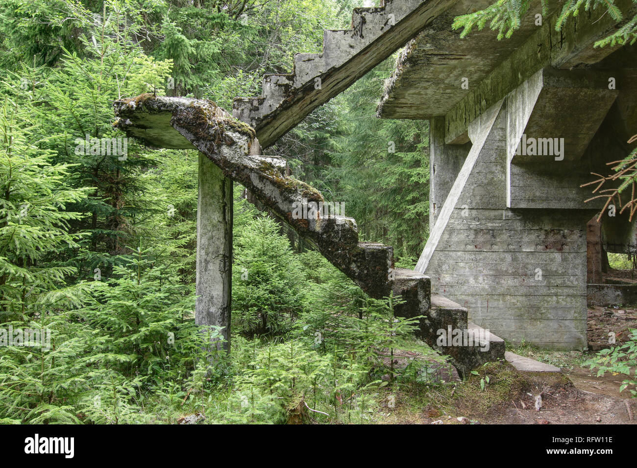 Abandoned ruins of the concrete staircase in the forest - Stock Image