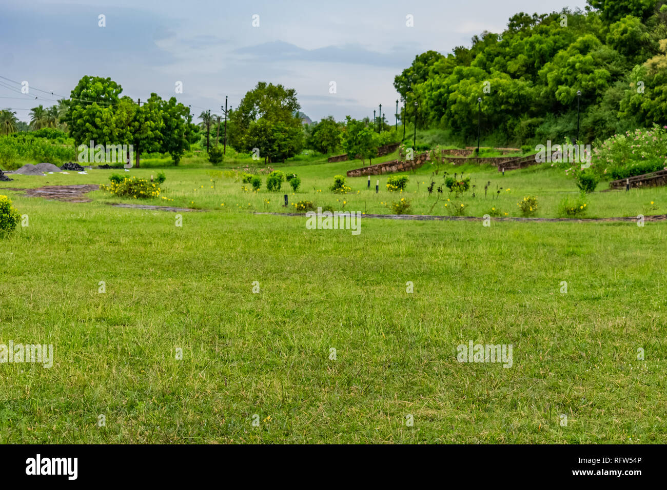 greenery fields looking awesome of a garden with trees & blue sky clouds. Stock Photo