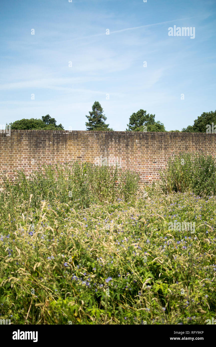 Outside the Tudor Walled Garden at the Bishop's Palace in Fulham, London Stock Photo