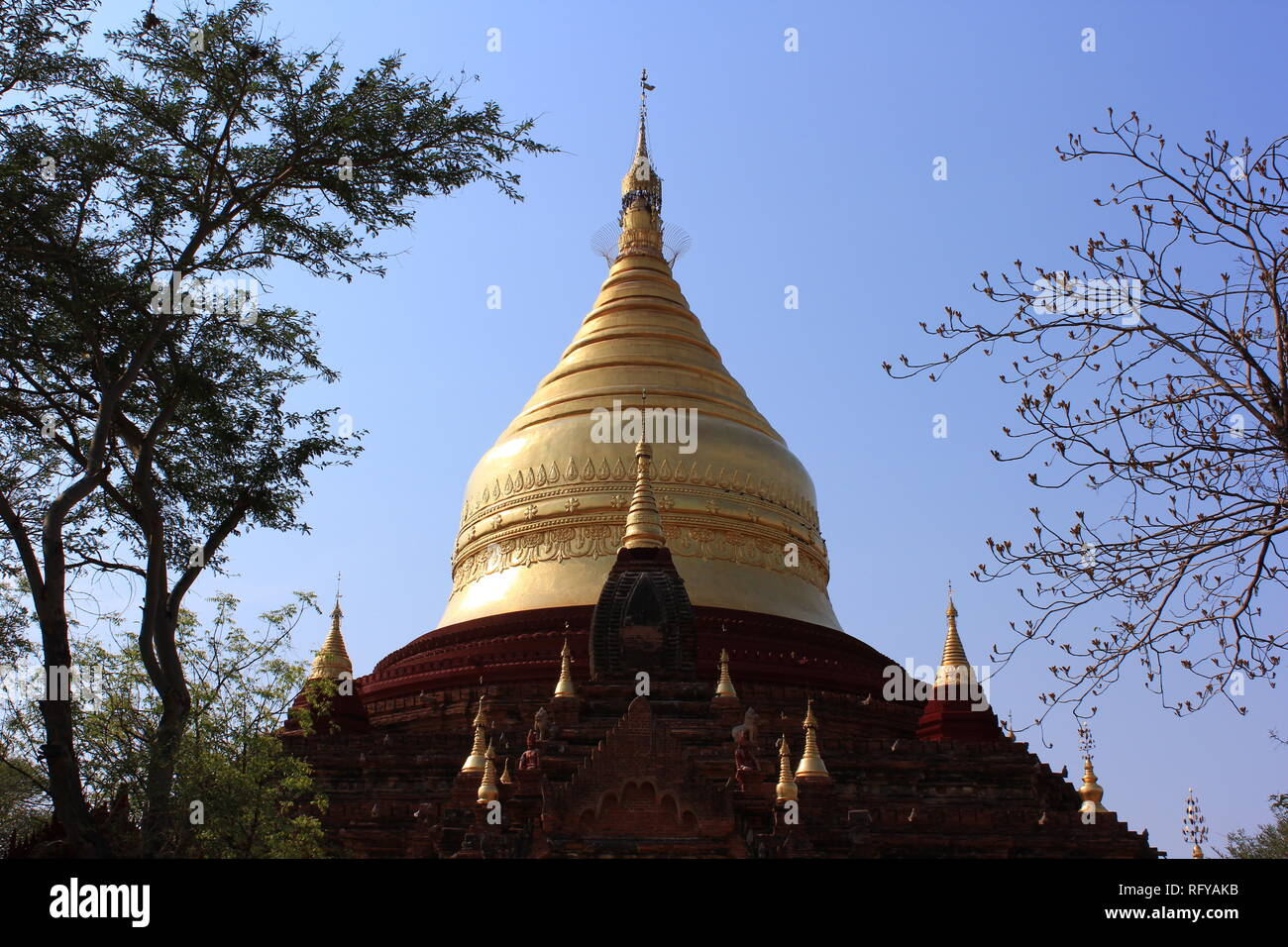 Temple landscape of dry Bagan in Myanmar with green bushes - Stock Image