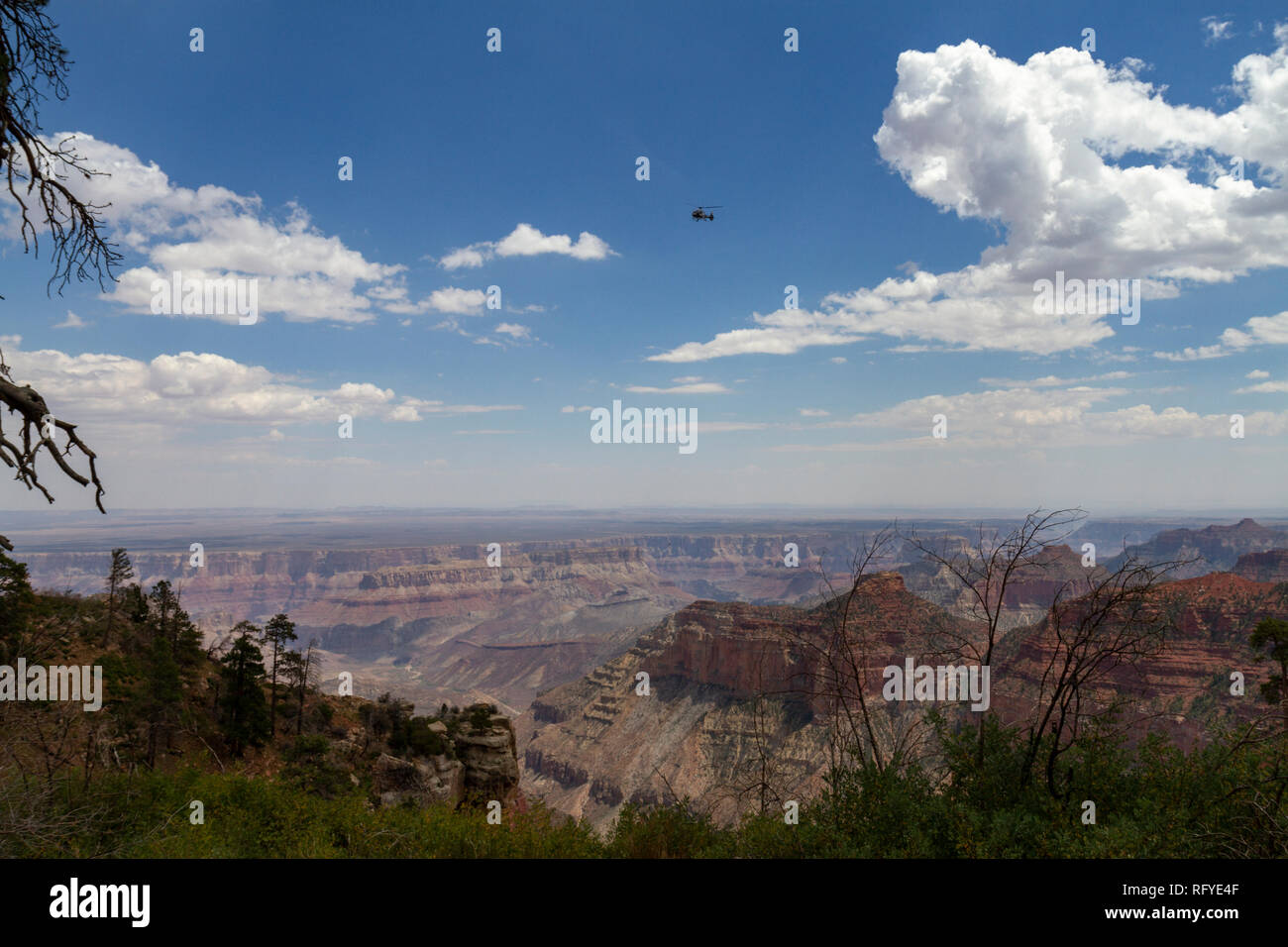 Tourist helicopter passing over the Grand Canyon (see notes), North Rim, Arizona, United States. - Stock Image