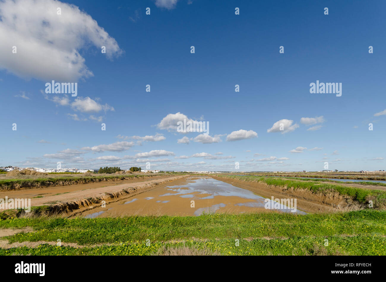 Salt pans, saltmarshes, salt evaporation pond, Tavira, Portugal, Europe. Stock Photo