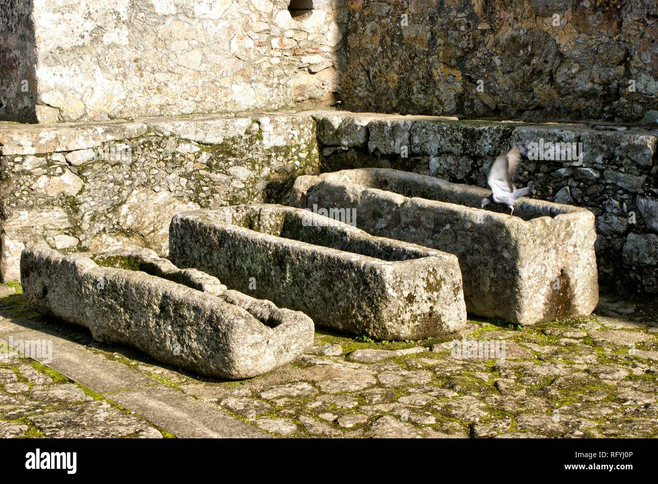 Ancient tombs in Santa Maria da Feira castle, Portugal - Stock Image