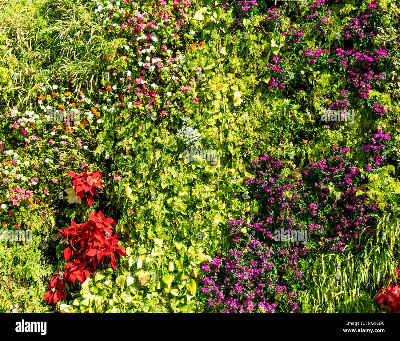 Green Leaf And Flowers Wall Texture Background Stock Photo Alamy