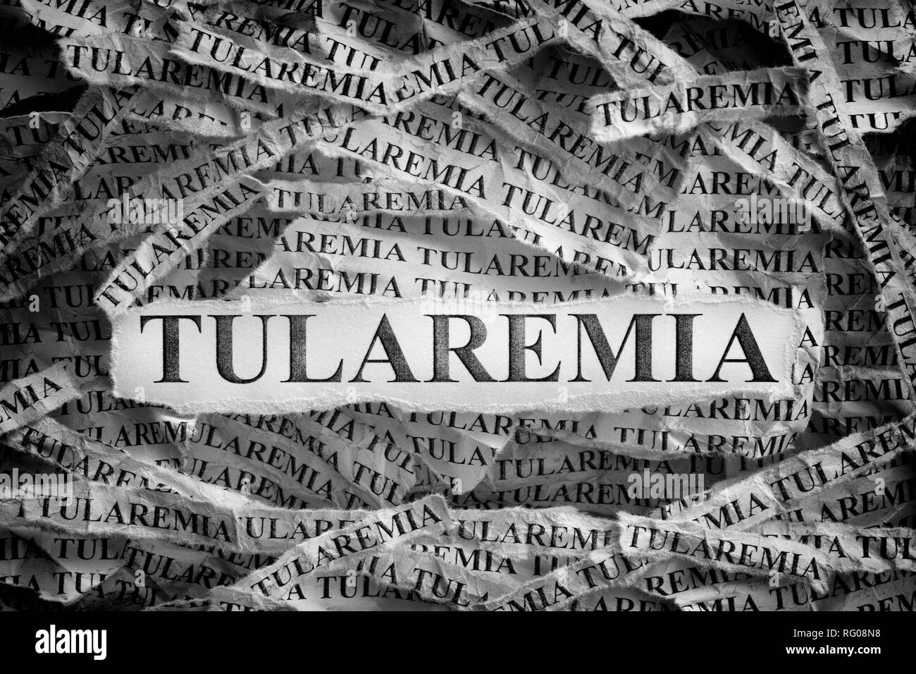 Tularemia. Torn pieces of paper with the words Tularemia. Concept image. Black and White. Close up. - Stock Image