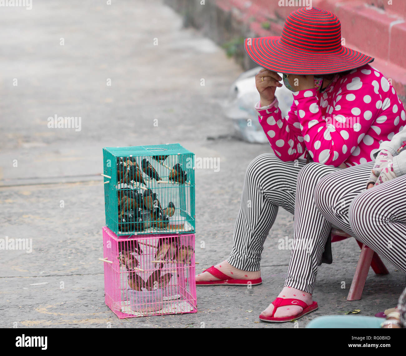 asian street seller of caged birds for good fortune - Stock Image