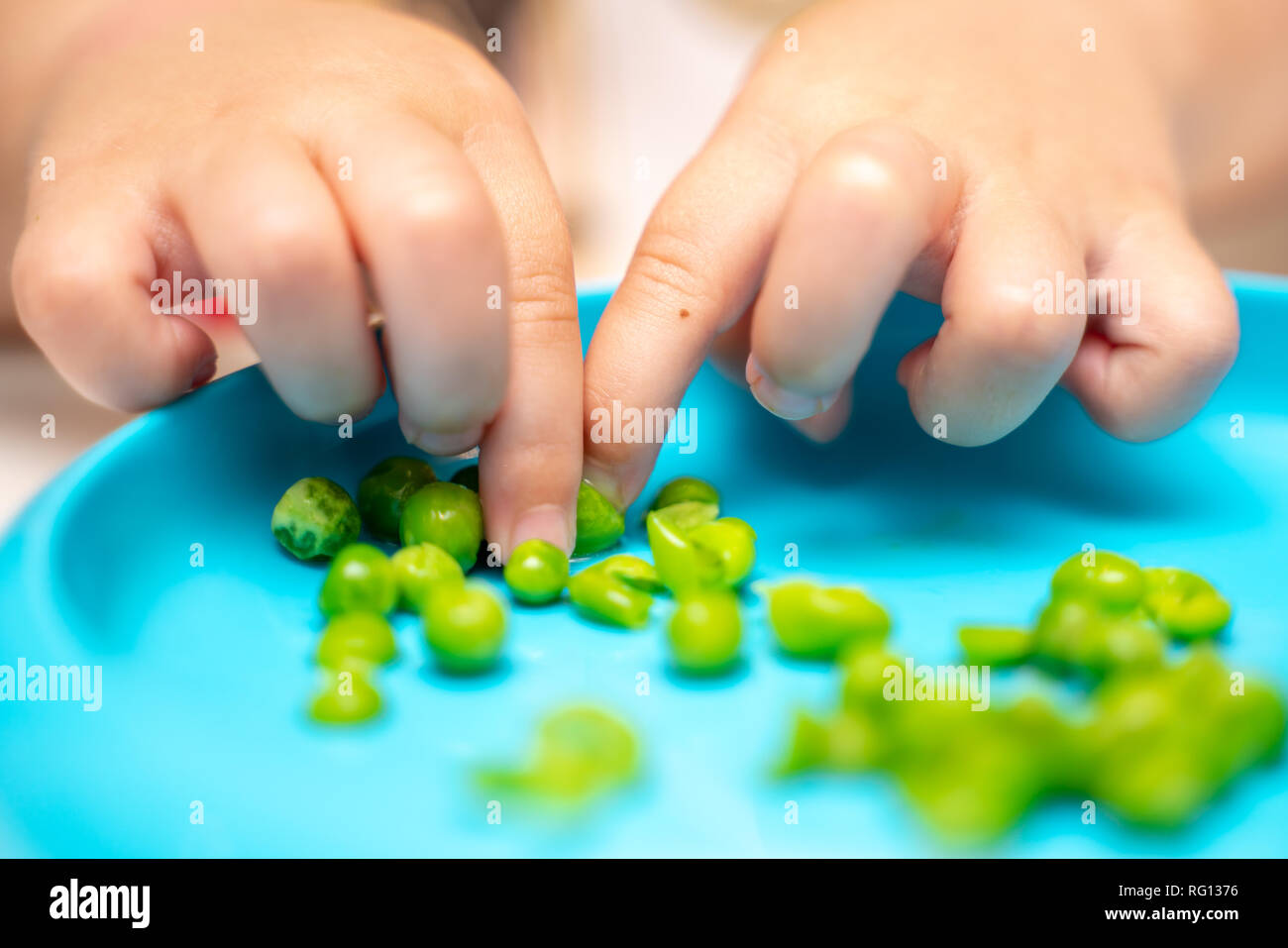 Young child's hands picking up, playing with and eating peas at dinner time from a blue plate - Stock Image