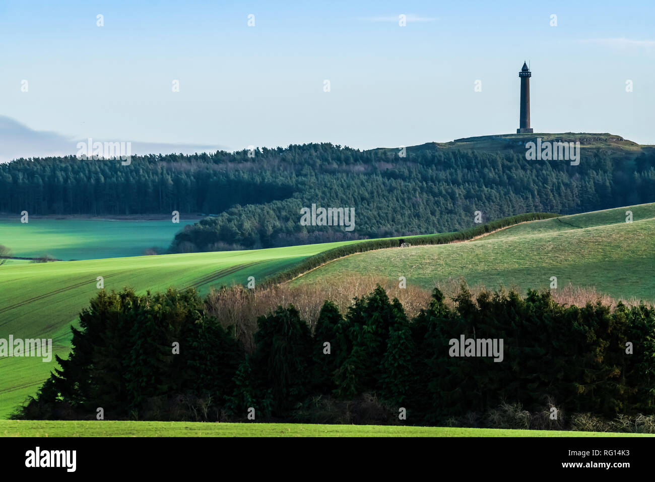 Ancrum, Jedburgh, Scottish Borders, UK. 14th January 2019. The 150 foot tall Waterloo Moument, under clear blue skies at Peniel Heugh in the Scottish  - Stock Image