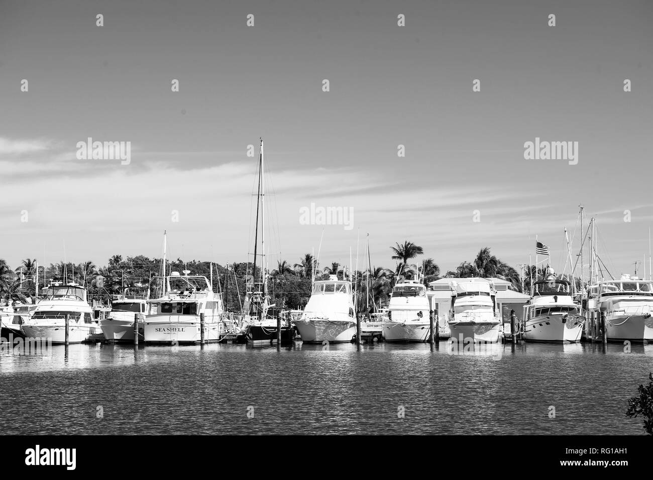 Key west, usa - February 08, 2016: yachts and sailing ships moored at sea pier on sunny blue sky. Yachting and sailing concept. Summer vacation on tropical island. Water transport and marine vessels. - Stock Image
