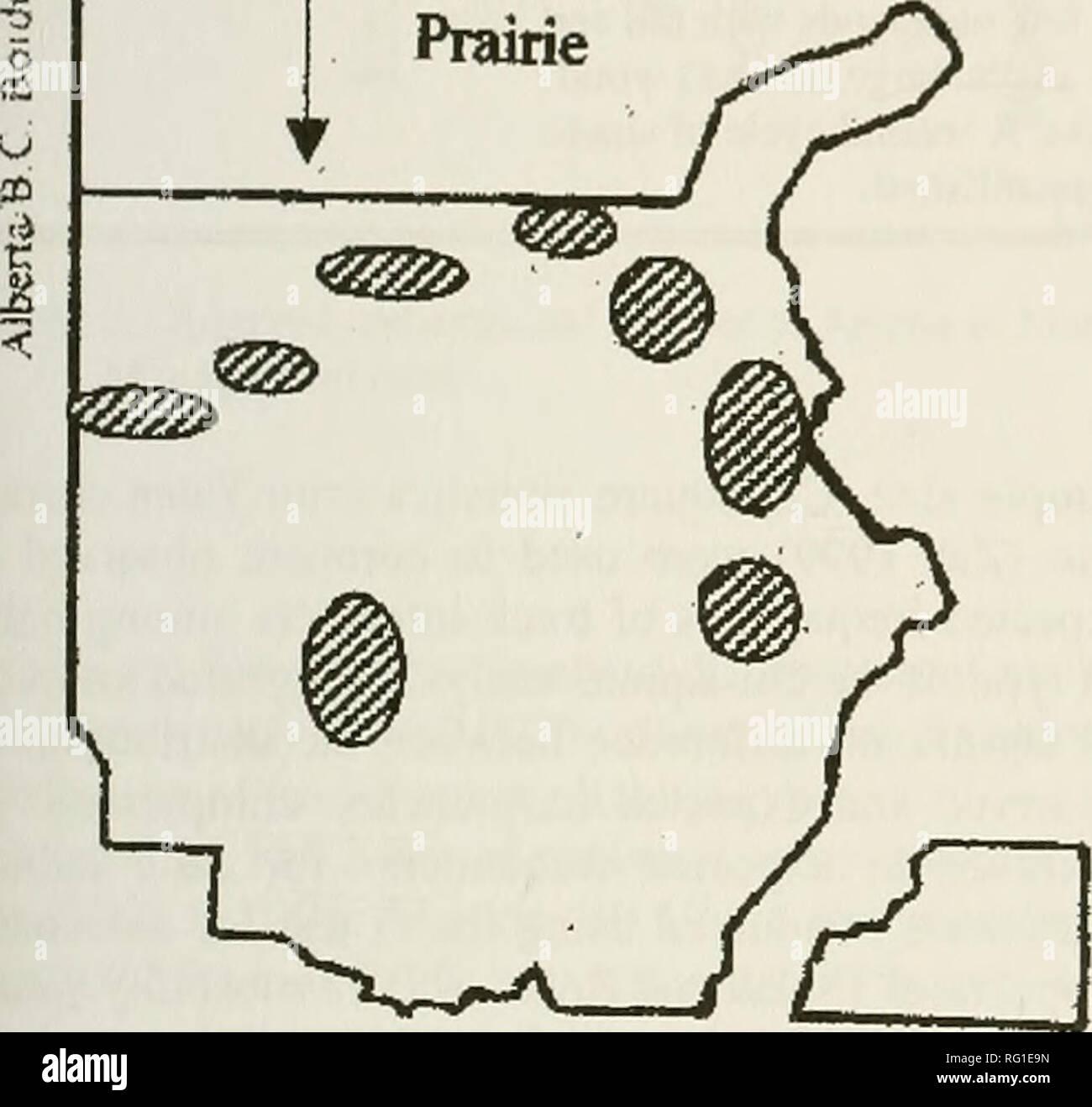 Prairie Books Stock Photos & Prairie Books Stock Images - Alamy