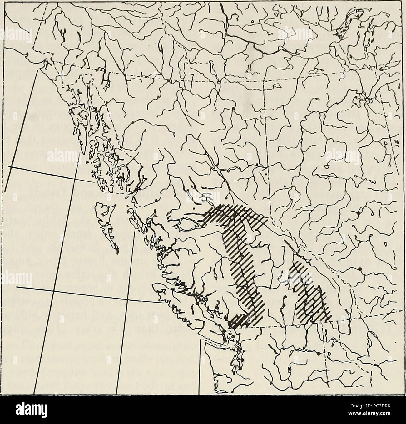 . The Canadian field-naturalist. 1991 Lane: Status of the White Sturgeon 163. Figure 3. Documented distribution of White Sturgeon in British Columbia (sources as noted in text). Most authors list the White Sturgeon as an anadromous species (Carl et al. 1959; Scott and Crossman 1973; and others); but with the exception of the San Francisco Bay area, there is only one published marine record of the species (Chadwick 1959). Galbraith, King and Kreitman (personal communications) relate that sturgeon are taken fairly often in the ocean off the mouth of the Columbia River. There are no reports of Wh - Stock Image