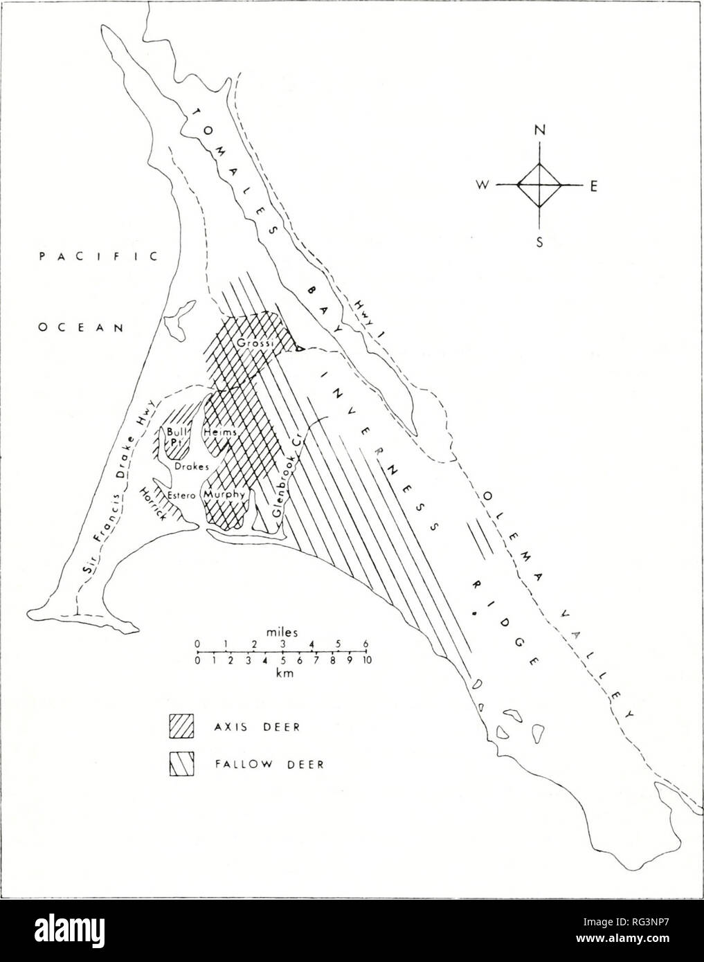 . California fish and game. Fisheries -- California; Game and game-birds -- California; Fishes -- California; Animal Population Groups; Pêches; Gibier; Poissons. EXOTIC DEER POPULATIONS AT POINT REYES 133. FIGURE 1. Ranges of the fallow and axis deer on Point Reyes National Seashore. Cattle grazing occurs in the western and northern part of the National Seashore; its eastern boundary coincides with that of the axis deer range. Names of locations refer to family names associated with ranches. Precipitation also occurs in the form of advection fog, particularly in summer. This fog, as well as fr Stock Photo