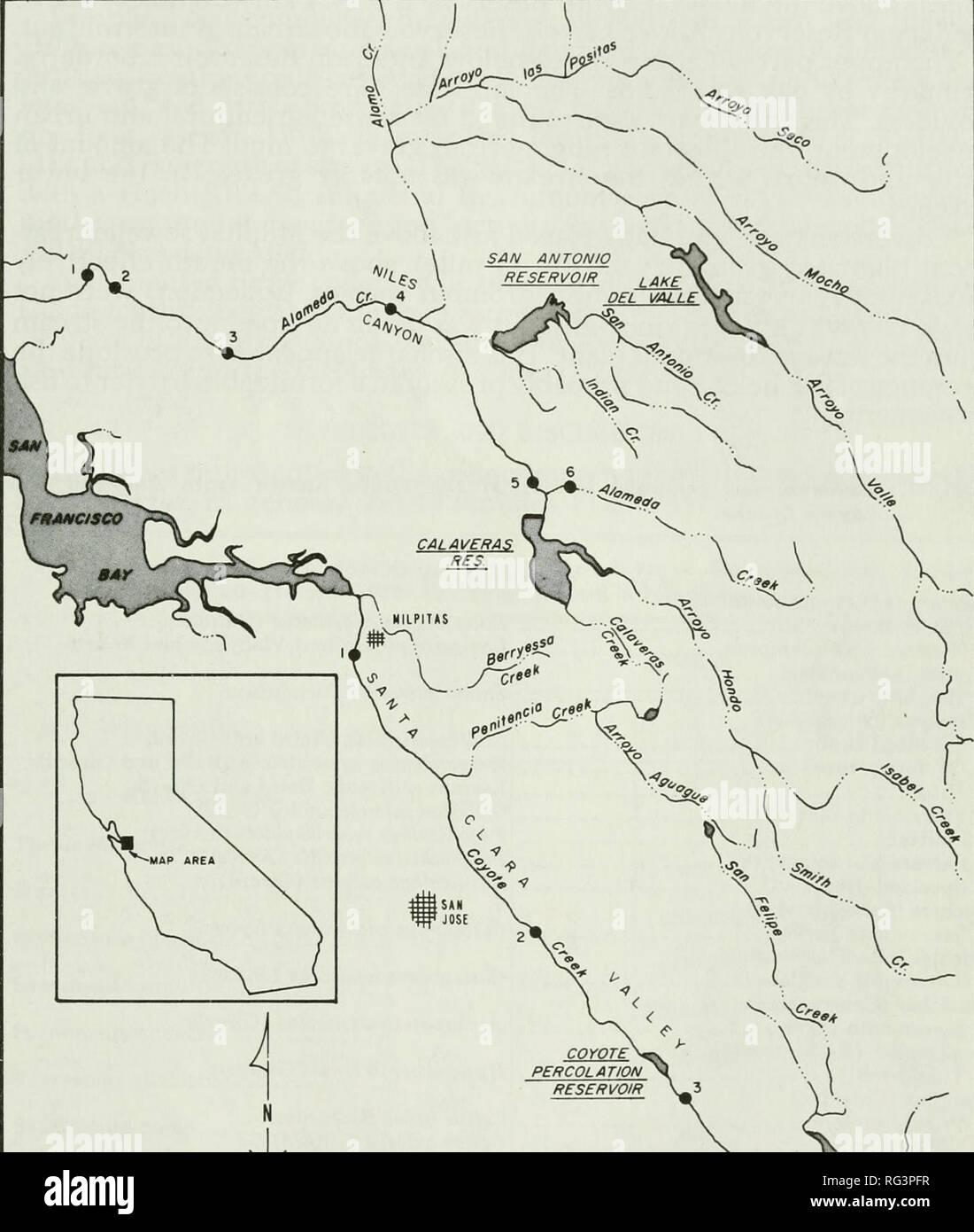 . California fish and game. Fisheries -- California; Game and game-birds -- California; Fishes -- California; Animal Population Groups; Pêches; Gibier; Poissons. OCCURRENCE OF NATIVE FISHES 197. ^^ :^ ANDERSON RESERVOIR FIGURE 1. Location of 1973 collection stations on Alameda and Coyote creeks. Coyote Creek Coyote Creek also drains the Diablo Mountains and flows through the long Santa Clara Valley, emptying at the extreme southernmost point of San Francisco Bay (Figure 1). Three impoundments are on this creek: Coyote, Anderson, and Coyote Percolation reservoirs. Our 1973 collections. Please n - Stock Image