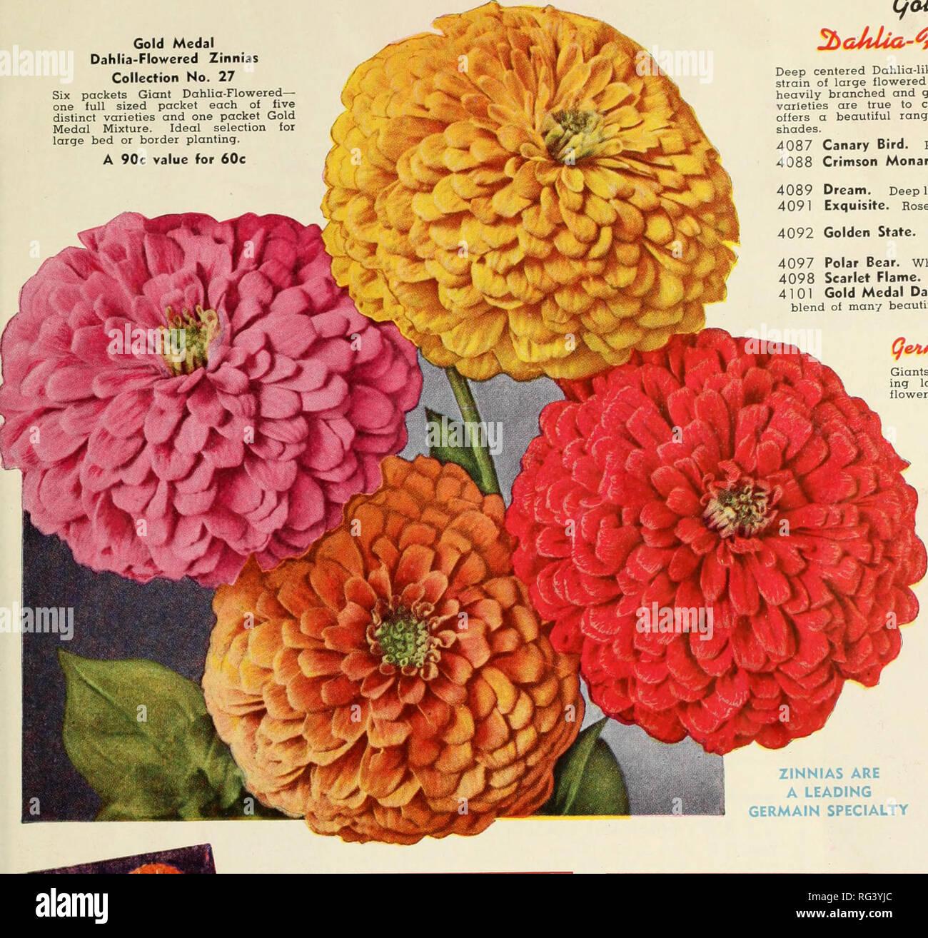 California Sets The Fashion Nurseries Horticulture Catalogs