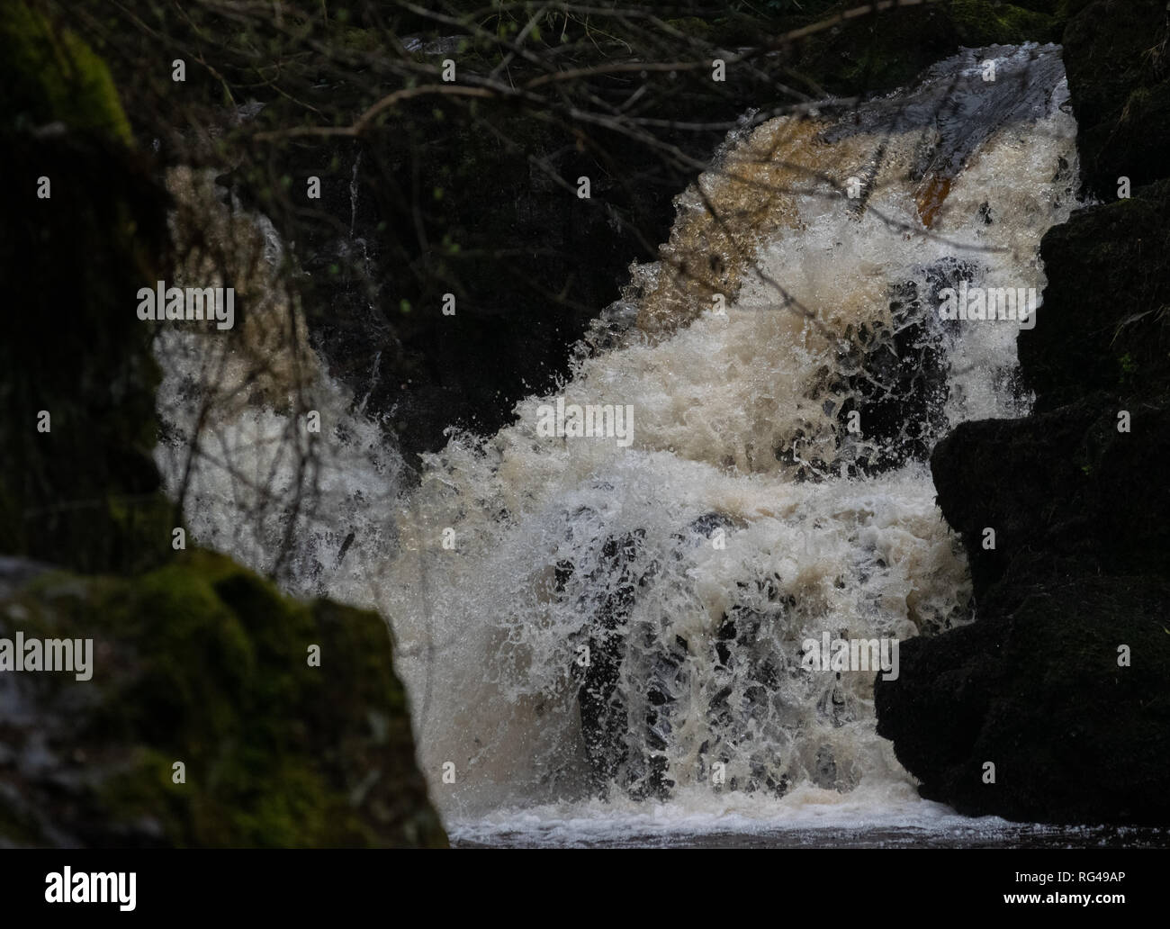 Hidden waterfall in a forest - Stock Image