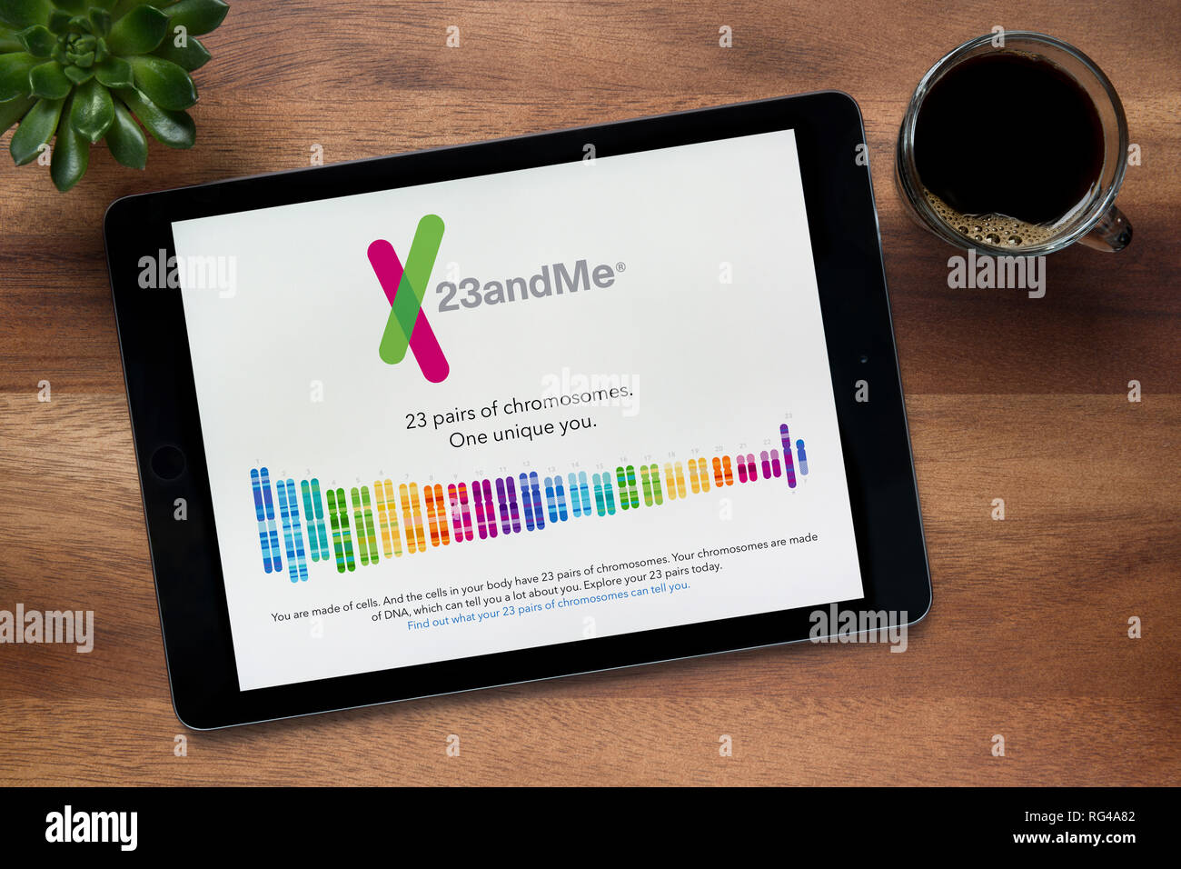 The website of 23andMe is seen on an iPad tablet, on a wooden table along with an espresso coffee and a house plant (Editorial use only). - Stock Image