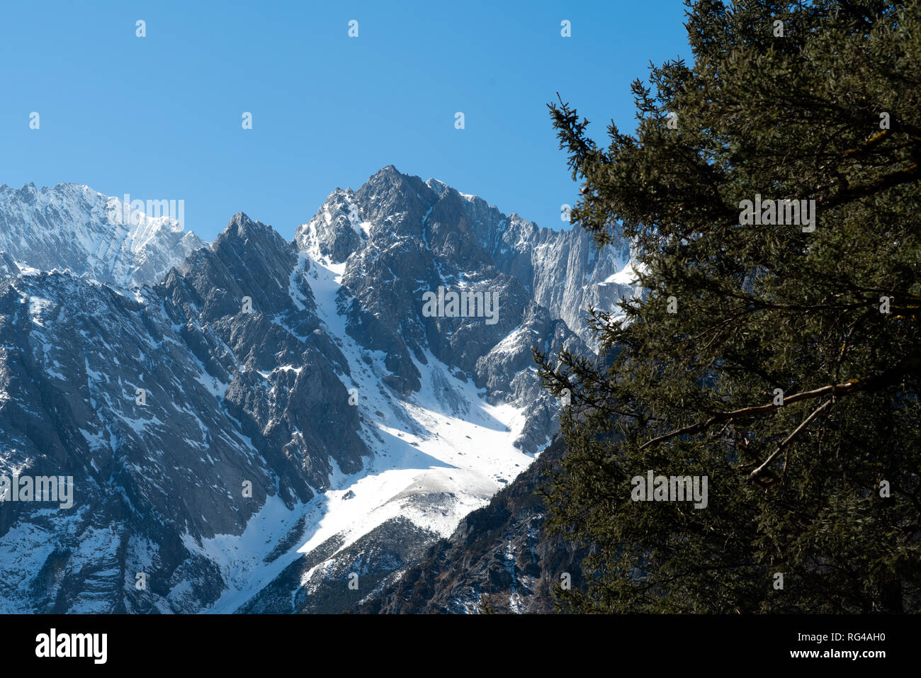 Jade dragon snow mountain situated in Yulong, Yunnan China. The snow covered mountain with rocky peaks with trees in the foreground giving a dramatic Stock Photo