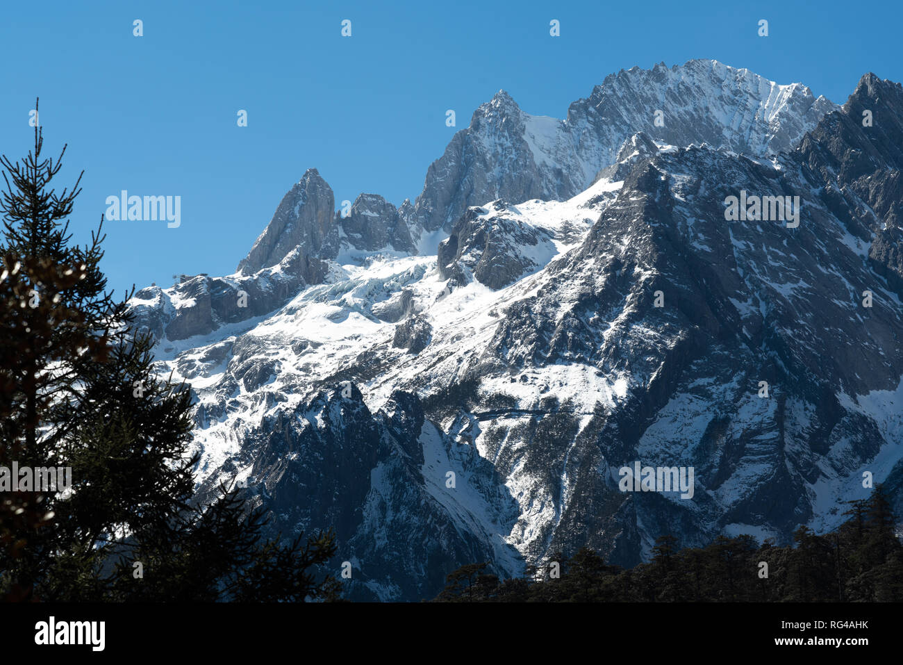 Jade dragon snow mountain situated in Yulong, Yunnan China. The snow covered mountain with rocky peaks with trees in the foreground giving a dramatic - Stock Image