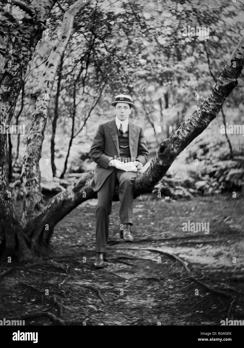 A young man wearing a straw boater sitting on a tree branch with an open book on his knee, circa 1920 - Stock Image