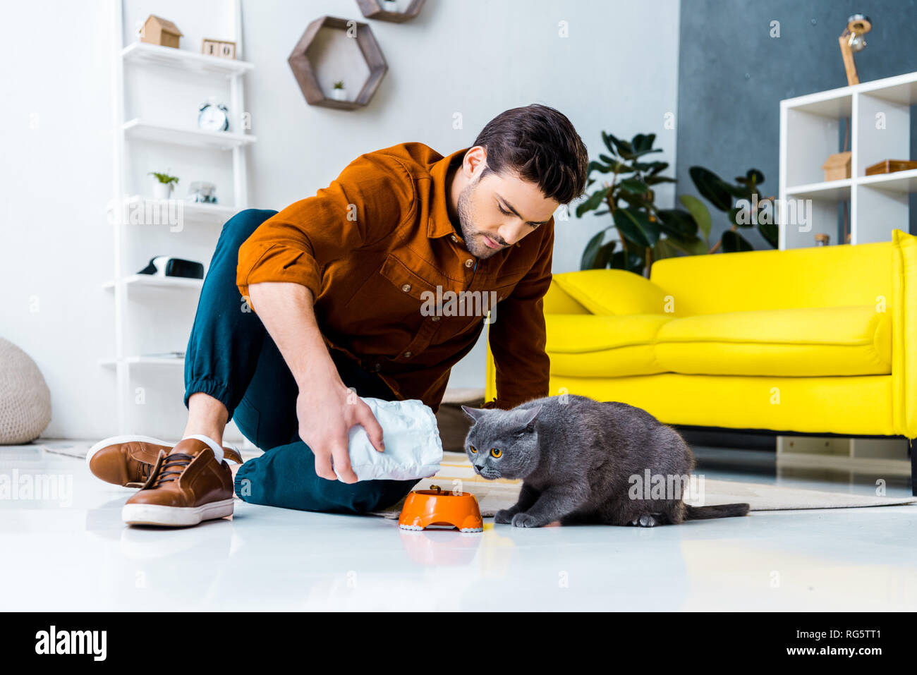 Feed The Cat Bowl People Stock Photos & Feed The Cat Bowl