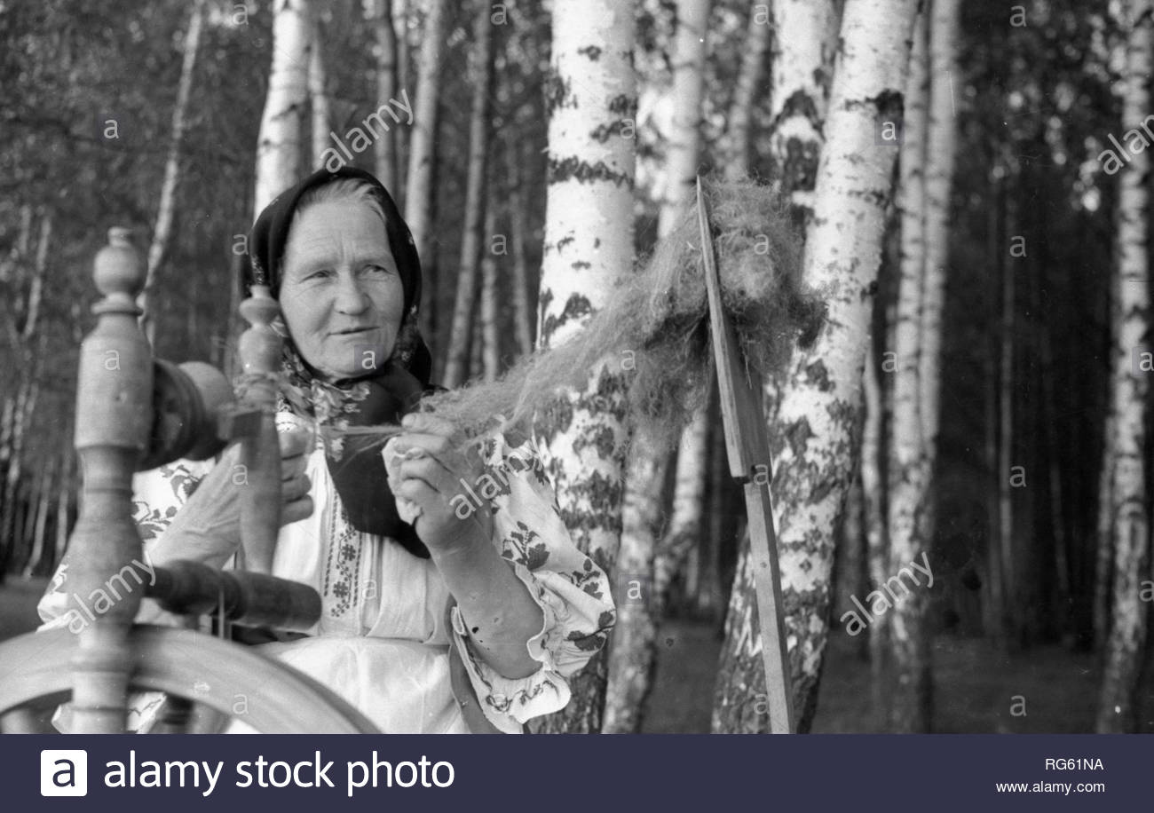 This grandmother is participant of ensemble of Amateur performances. She spins woolen thread with the help of an ancient spinning wheel. An elderly woman is wearing national Belarusian clothes. So looked our ancestors in ancient times, who with the help of spinning wheel made their clothes. I photographed her on lawn near birch grove. - Stock Image