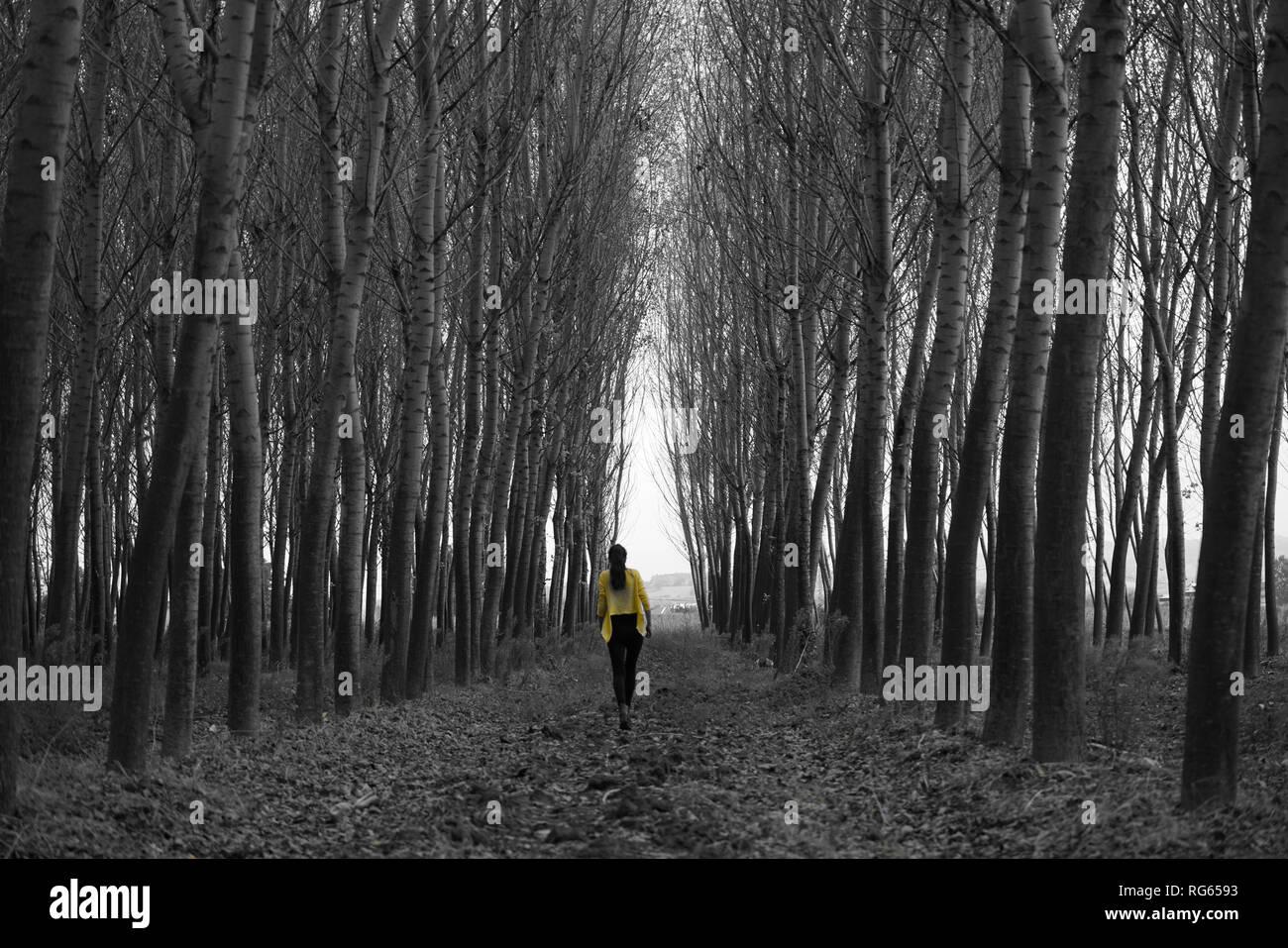 Photo of walking woman - Stock Image