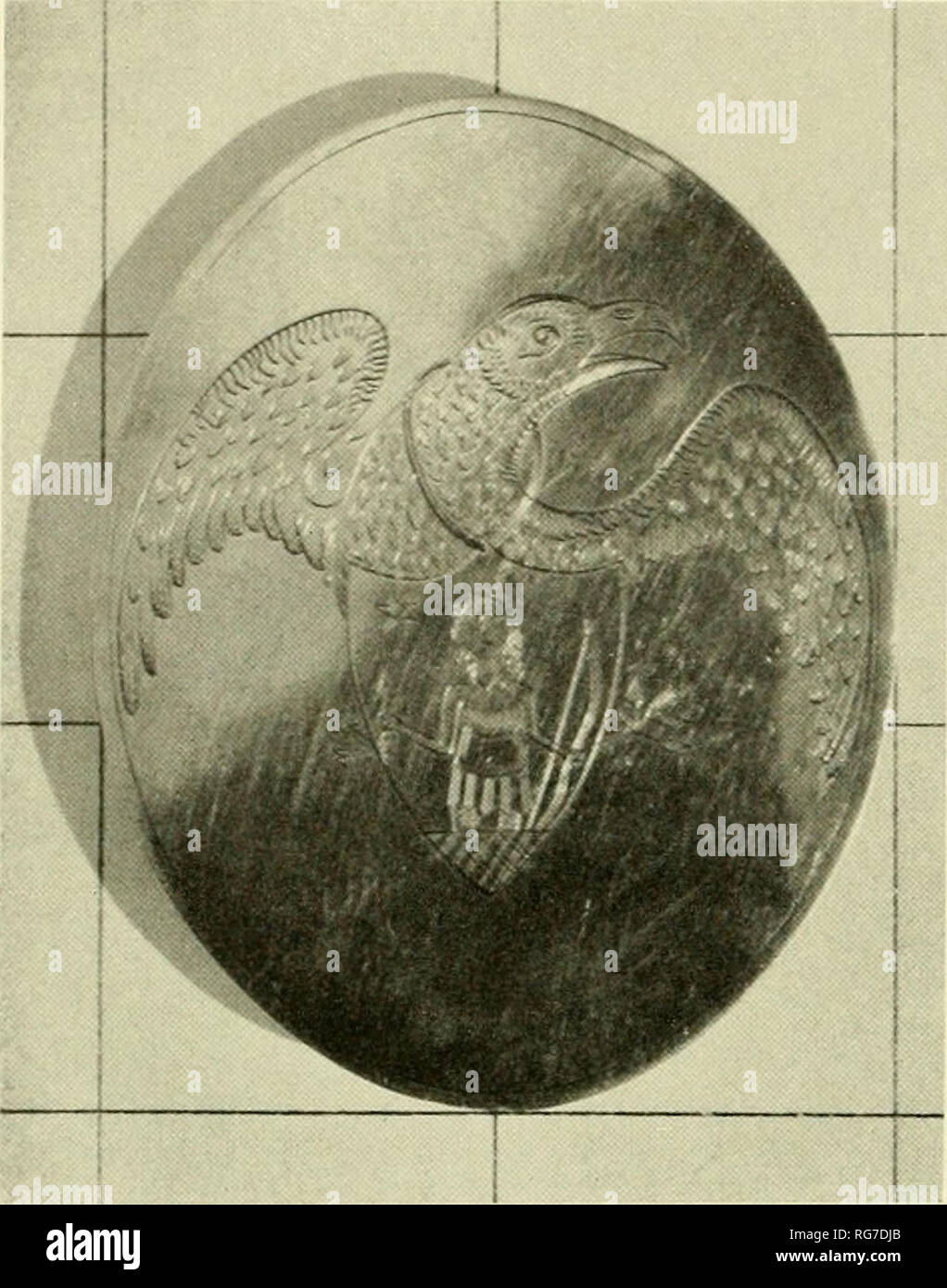 . Bulletin - United States National Museum. Science. Figure 178.—Specimen in Campbell collection. plates were locally made, as was this one, and ex- amination of a number of specimens gives reason to believe that many were made by rolling out large silver coins into thin ovals, which were then engraved and fitted with fasteners on the reverse. The fasteners on all pieces studied indicate that the plates were intended to be ornamental rather than functional. In the Pennsylvania State Museum there is a similar oval plate that was worn by Col. Philip Spengler of that State's Militia in 1812-1816. - Stock Image