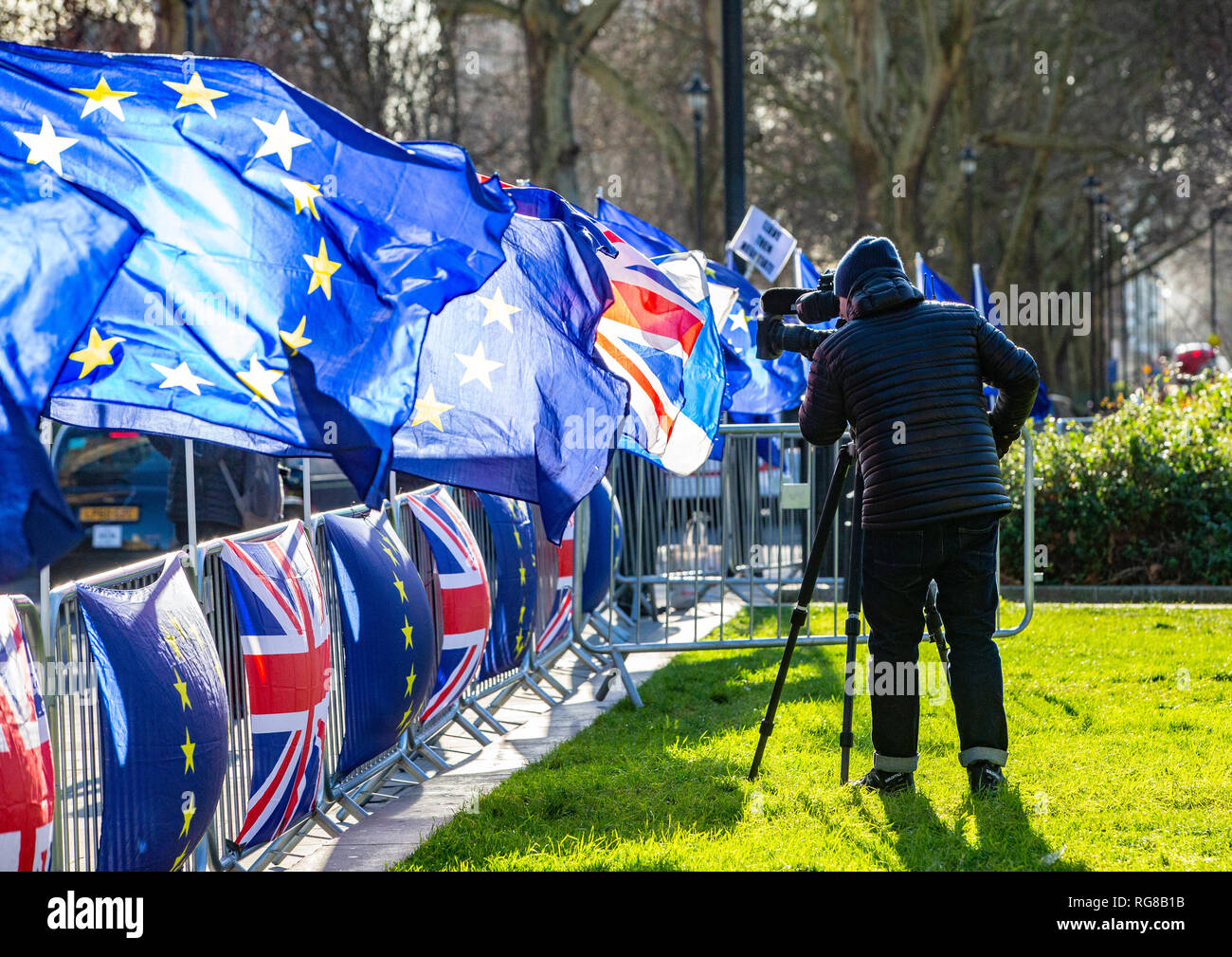 London, UK. 28th Jan, 2019. Pro European Union flags on College Green in Westminster one day before another crucial Brexit vote. The UK Parliament will debate and vote on a 'Plan B' Brexit plan from Theresa May's government on 29 January, it was announced on Thursday. May suffered one of the biggest defeats in British political history earlier this week, when her withdrawal agreement - negotiated for two years with the EU - was defeated by 230 votes Credit: Tommy London/Alamy Live News - Stock Image