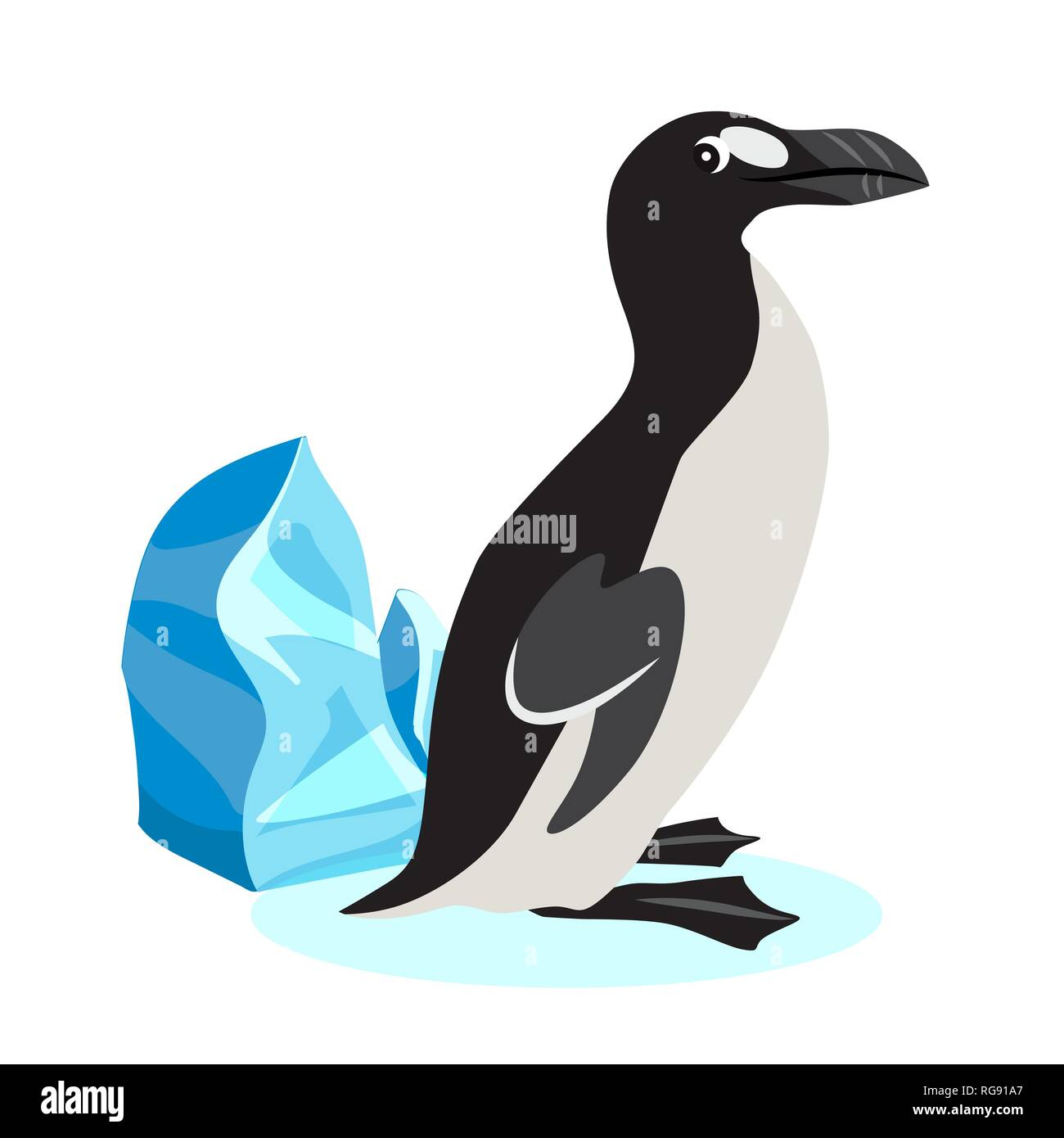 Cute great auk icon, black polar bird isolated on white background, extinct species, vector illustration. - Stock Image