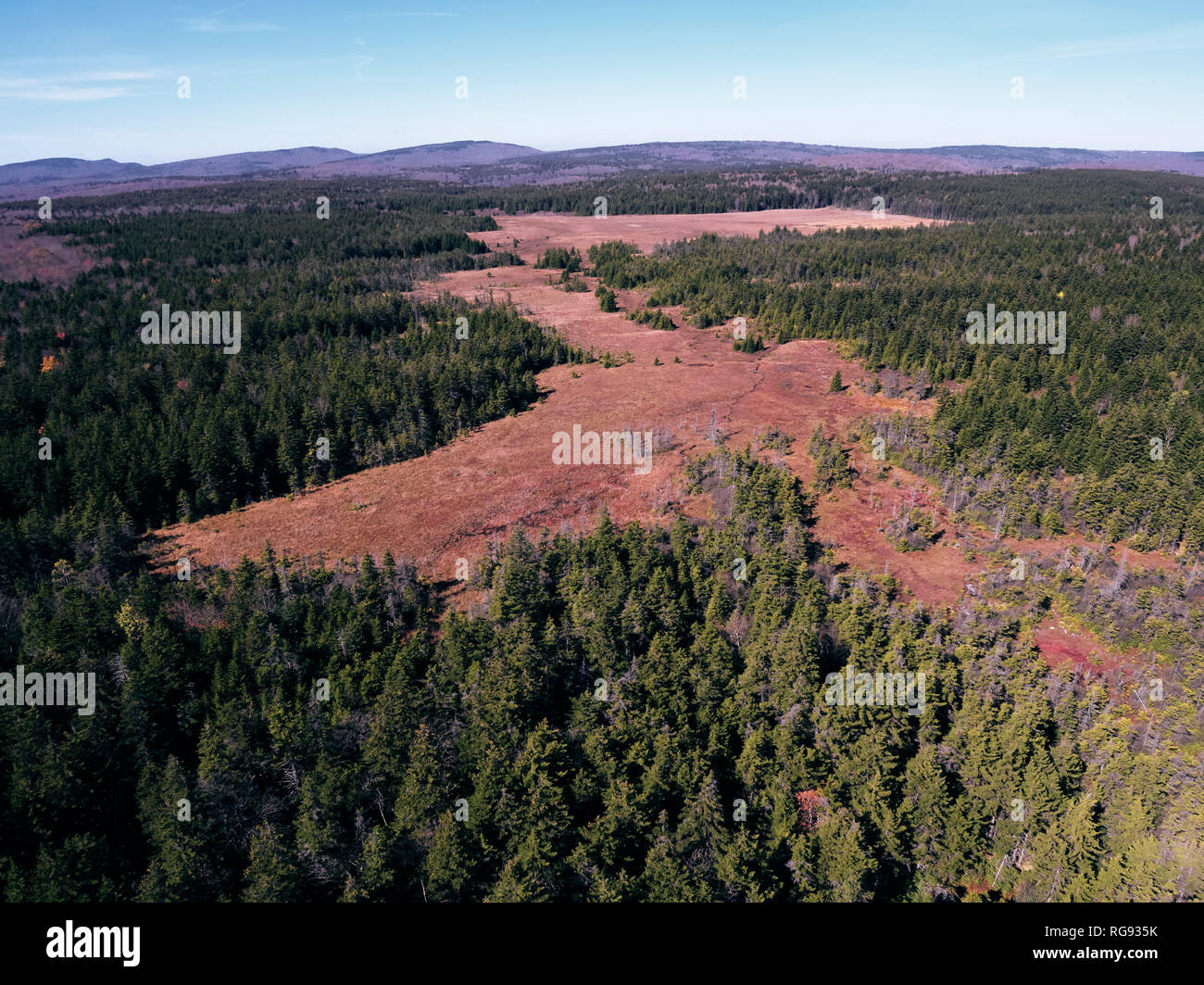 USA, West Virginia, Aerial view of Dolly Sods Wilderness area Stock Photo