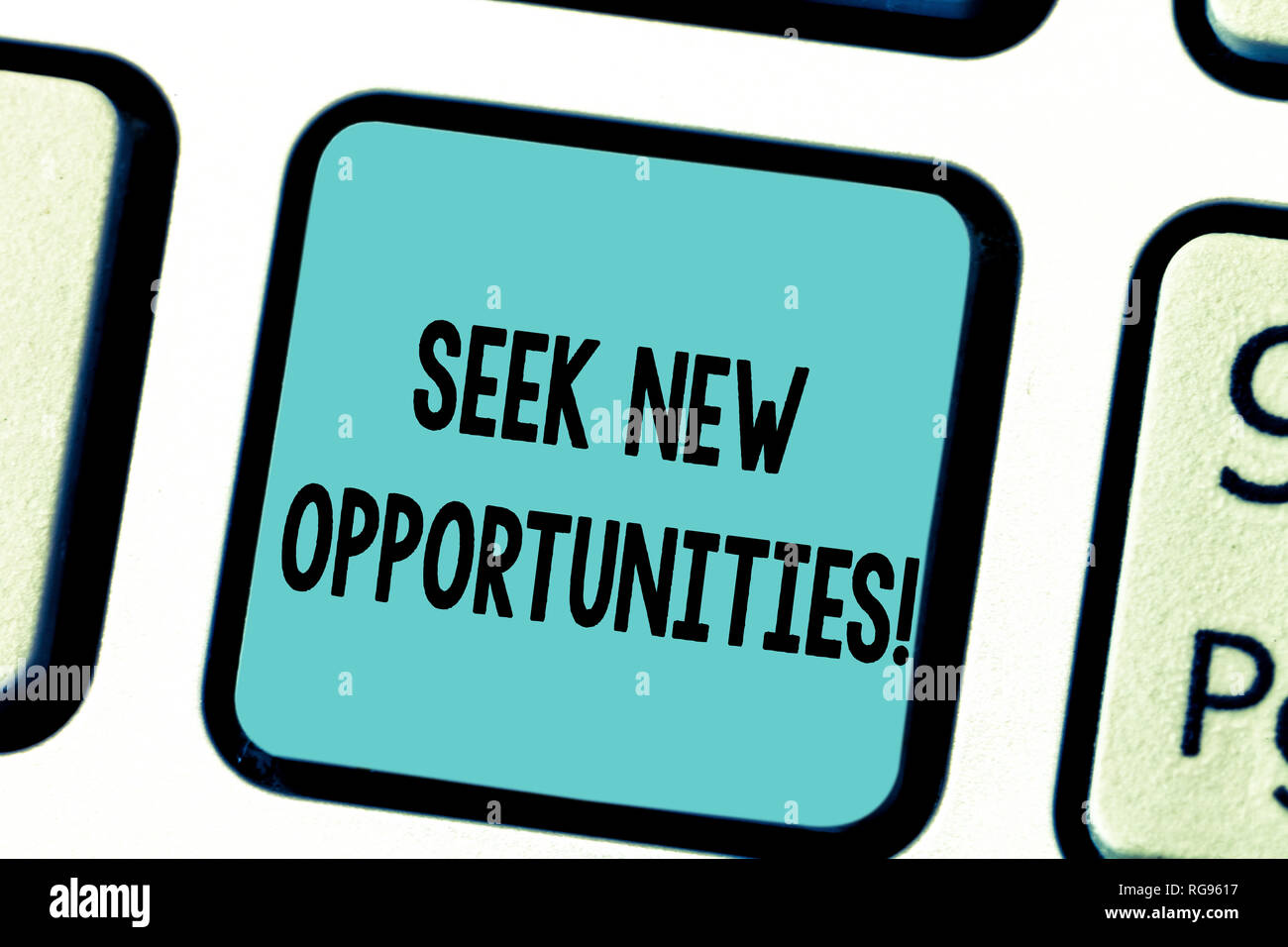 Text sign showing Seek New Opportunities  Conceptual photo