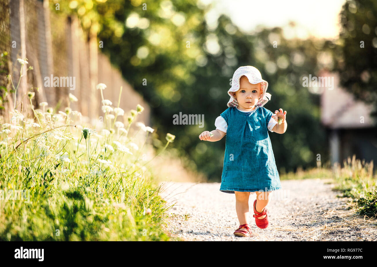 Portrait of baby girl walking outddors in summer - Stock Image