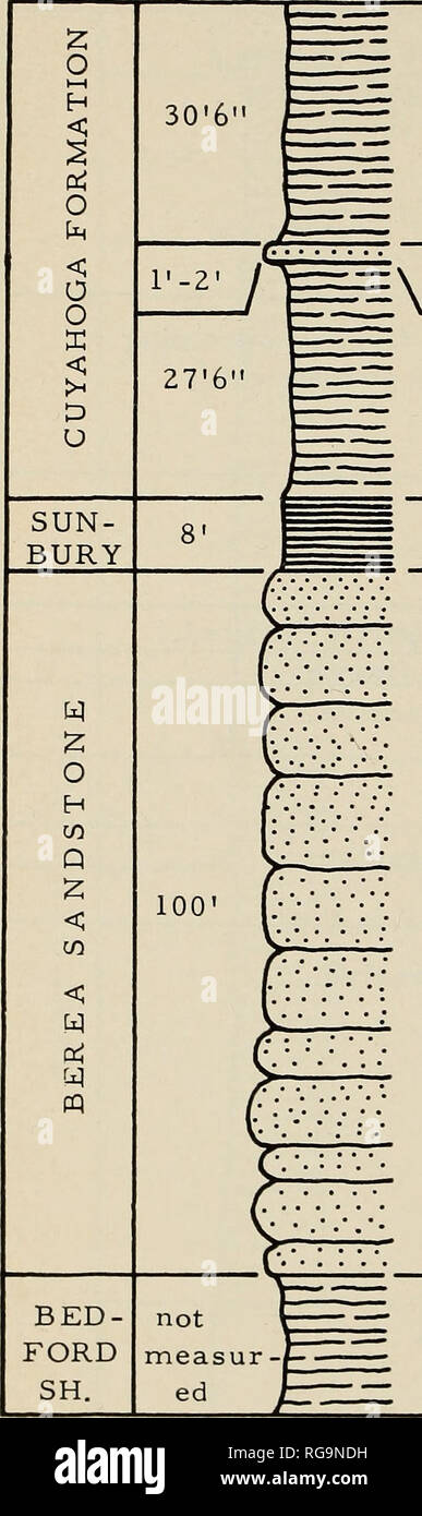 """. Bulletins of American paleontology. Paleontology. 196 Bulletin 196 LOCALITY 0-7. —!, *6. Shale, greenish-gray, clayey; some maroon shale in upper part; covered above. 5. Siltstone, buff to gray; """"Buena Vista' ; *4. Shale, gray, yellowish, buff, to reddish, clayey. *3. Shale, black, .fissile; road intersec tion at base of Sunbury shale. 2. Sandstone; measurement from well on Lester's Crabtree Farm. * 1. Shale, gray to tan; sample taken 1 mile south of Hiway 50 on Jester Hill Rd.. Please note that these images are extracted from scanned page images that may have been digitally enhanced f - Stock Image"""