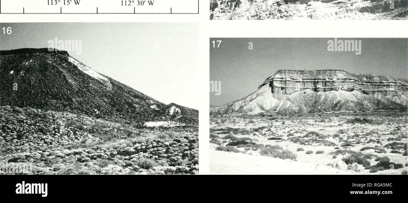 . Bulletins of American paleontology. . Texl-figuri; 13.—Western eiiibayiiient. San Ignacio to Aitovo Me/quital. with outcrops ot the Eocene niarine Bateque Formation. Map is niodihed troni Squires and Denietrion ( 1992). Te.xt-tigure 14.—Arroyo San Ignacio. view from Rancho el Estribo at type area of the Late Miocene San Ignacio Formation. 4-8 km downstream from San Ignacio. Photo. T. M. Cronin. 1984. Text-figure 13.—San Ignacit) Formation, south wall of AiToyt) San Ignacio shvtwing fossiliferous inarine sediments overlain by an unnamed volcaniclastic sandstone (possibly the Atajo Formation o - Stock Image
