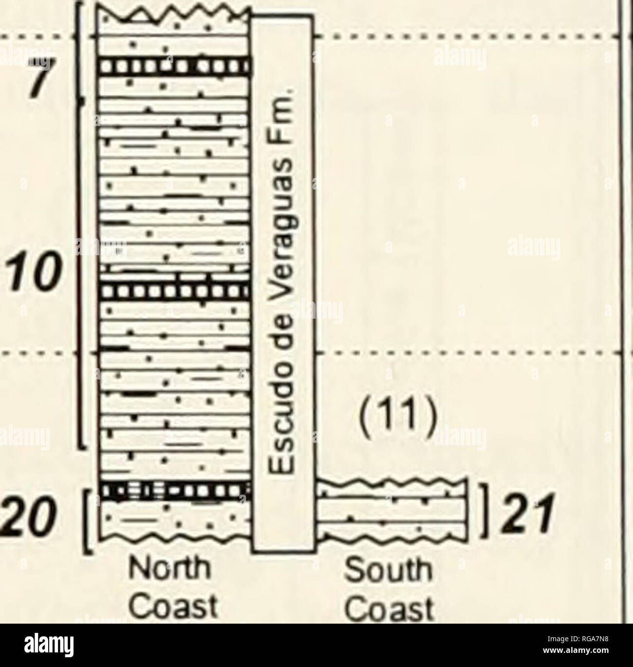 . Bulletins of American paleontology. 27 VALIENTE PENINSULA Blufl (12) 15 29 Finger Island (14) 30 ESCUDO DE VERAGUAS ISLAND (10). Text-figure 4.—Summary of the stratigraphy of the Bocas del Toro Basin for all sections sampled for this paper. Section numbers and faunule numbers shown as in Text-figure 3. Finger Island on the Valiente Peninsula to Early Pleis- tocene (1.4 Ma) at Swan Cay; but the collections are more evenly distributed in age than in the Limon Basin (Text-fig. 4; Appendix B, this volume). The 46 collec- tions from the Canal Basin are all Late Miocene (Text- fig. 5), ranging fro - Stock Image