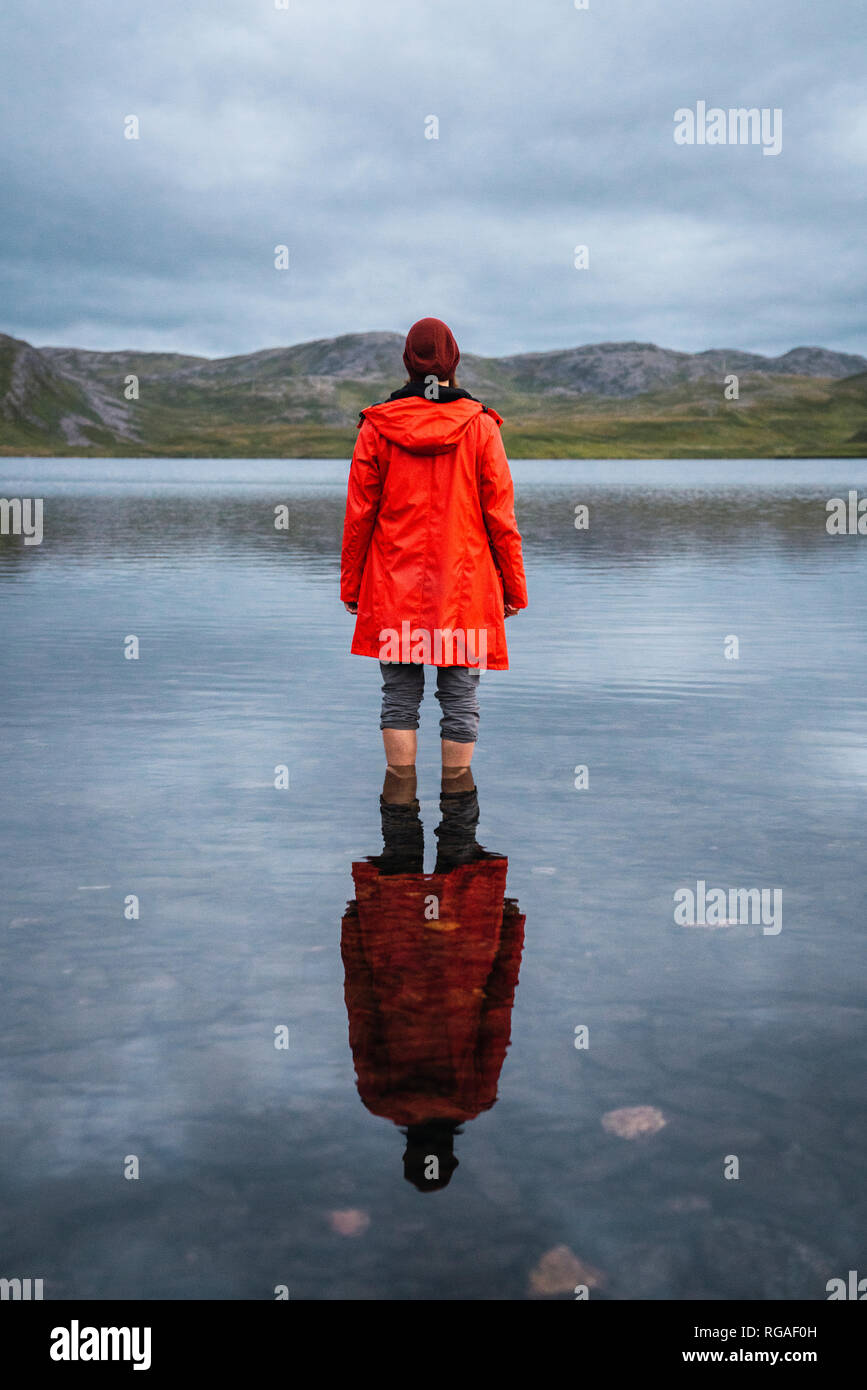 Young man standing ankle deep in water, looking at distance, rear view - Stock Image